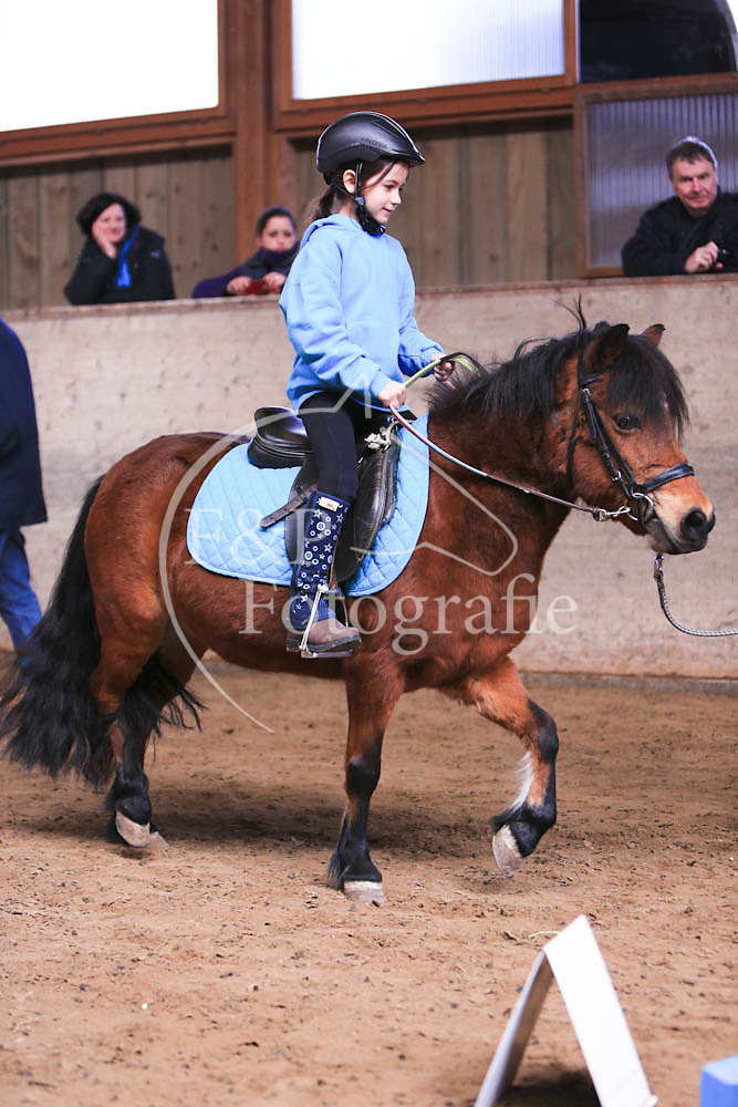Gymkhana P3 Pony Stufe 0