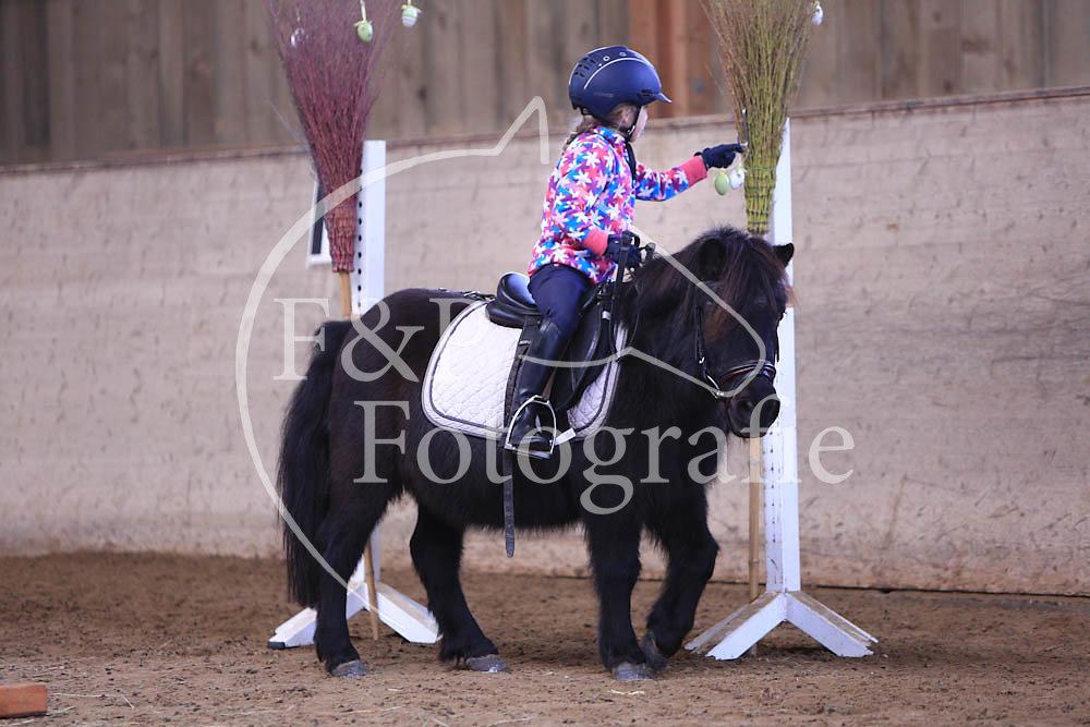 Gymkhana P4 Pony Stufe 1