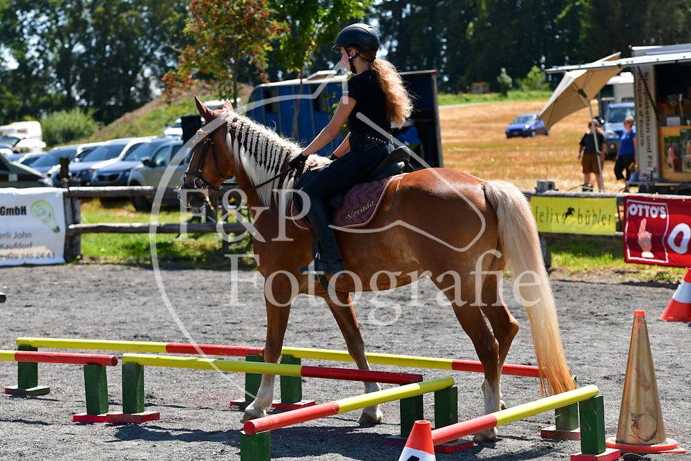 Gymkhana P2 Pferd Stufe 1