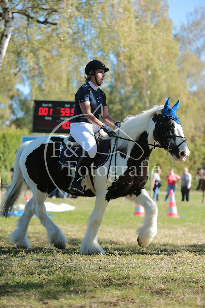 Gymkhana P10 Pony Stufe 2